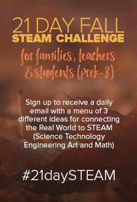 fall steam challenge